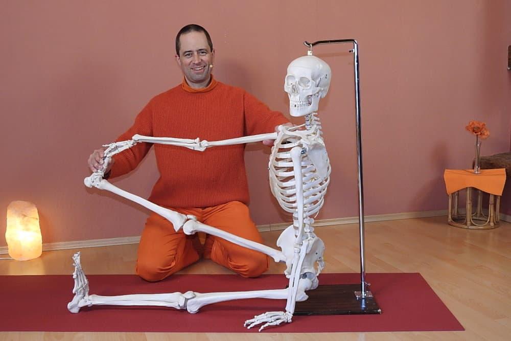 Live Onlinekurs: Yoga Anatomie - Wie Asanas die Körperhaltungen im Alltag verbessern